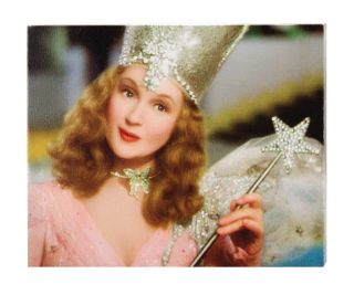 Glinda the Good Witch of the North 1